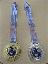 Tae Kwon Do medals